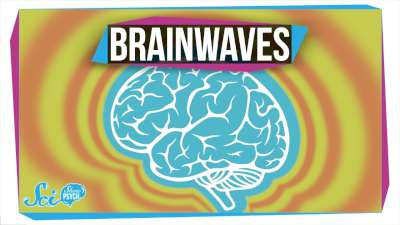 S2017E46 - What Do Different Brainwaves Mean?