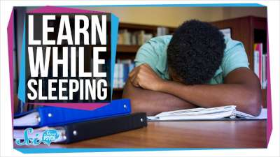S2017E64 - How to Learn While You Sleep