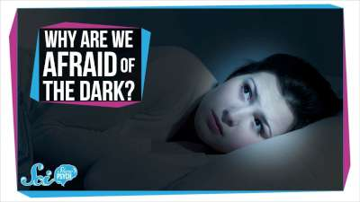 S2017E69 - Why Are We Afraid of the Dark?
