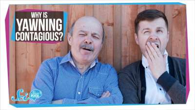 S2017E74 - Why Is Yawning Contagious?