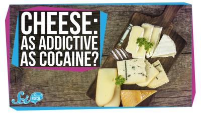 S2018E32 - Is Cheese Really as Addictive as Cocaine?